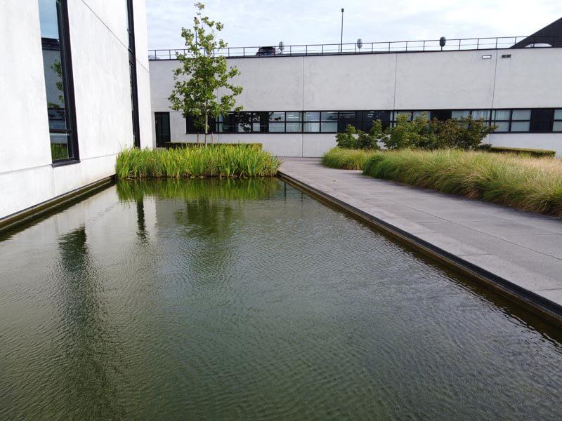 Bedrijfstuin Hitachi Dutch Quality Gardens (3)