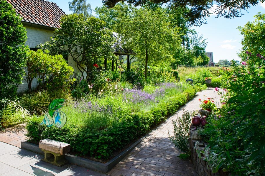 Bloemrijke Tuin Dutch Quality Gardens (1)