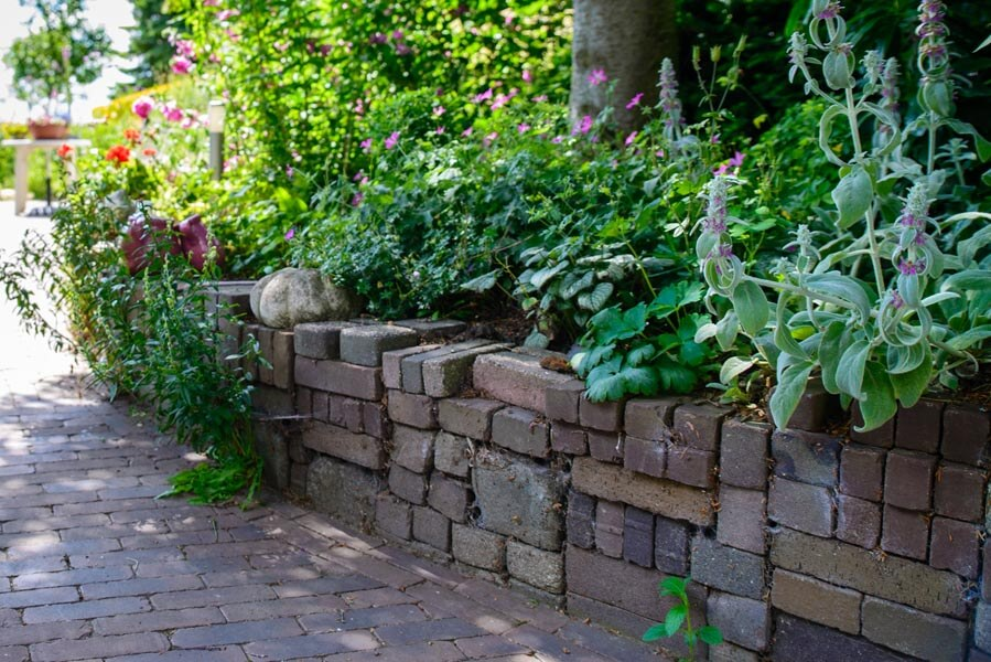 Bloemrijke Tuin Dutch Quality Gardens (5)