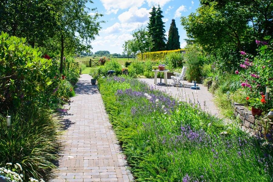 Bloemrijke Tuin Dutch Quality Gardens (6)
