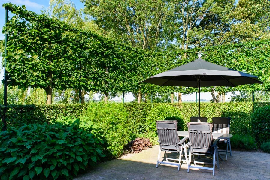 Landelijke Tuin Dinteloord Dutch Quality Gardens (1)