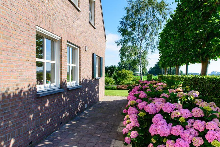 Landelijke Tuin Dinteloord Dutch Quality Gardens (4)