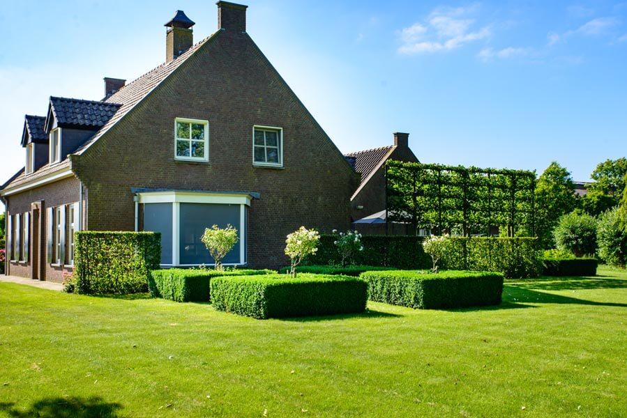 Landelijke Tuin Dinteloord Dutch Quality Gardens (6)