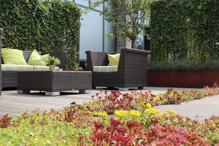 groendak dutch quality gardens voorbeeld 3