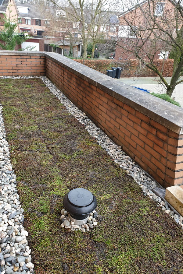 groendak dutch quality gardens voorbeeld 5