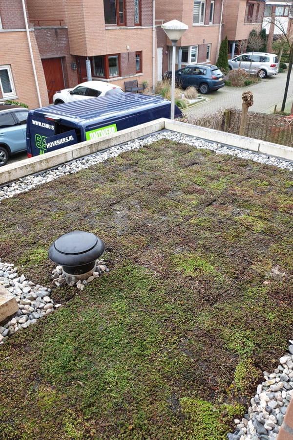 groendak dutch quality gardens voorbeeld 6