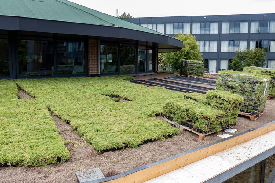 groendak dutch quality gardens voorbeeld 7