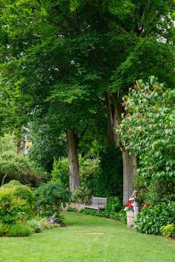 bosrijke tuin met vijver (22)
