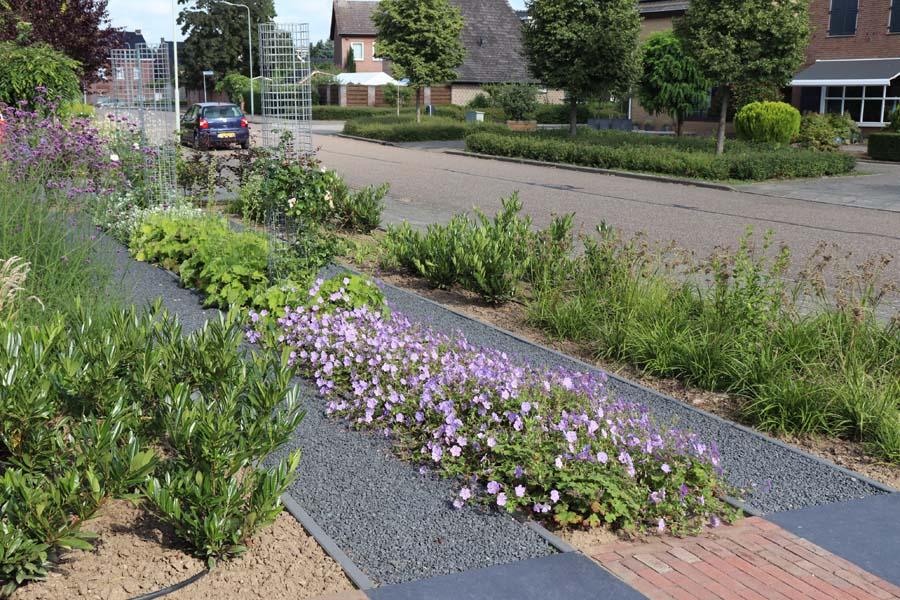 formele tuin met gevarieerde beplanting (3)