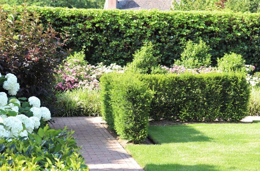 formele tuin met gevarieerde beplanting (6)