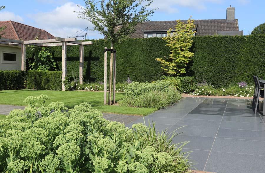 formele tuin met gevarieerde beplanting (7)