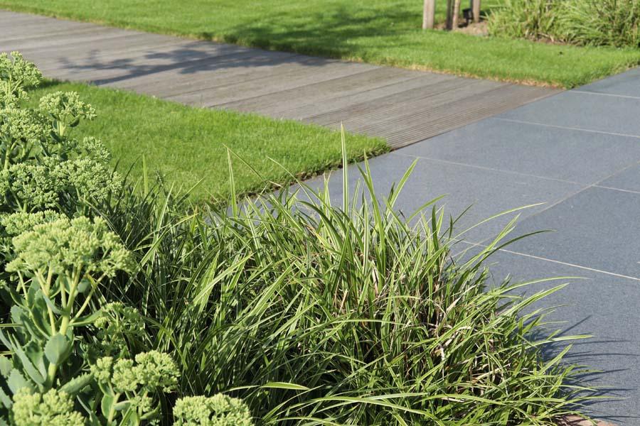 formele tuin met gevarieerde beplanting (8)