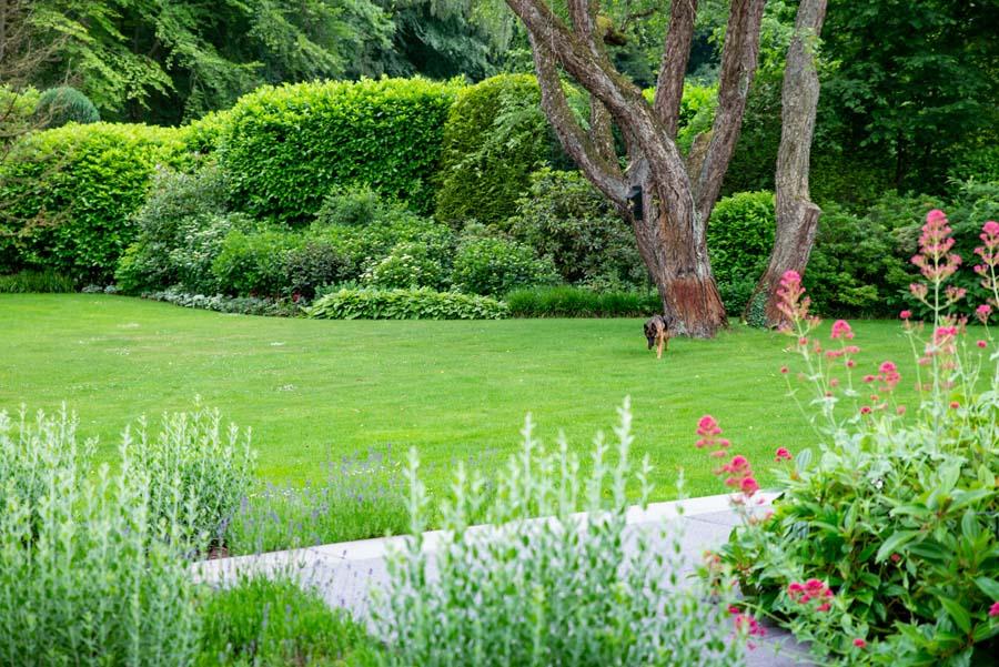 groene tuin in schalkhaar (12)