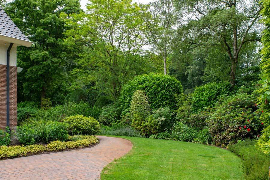 groene tuin in schalkhaar (2)