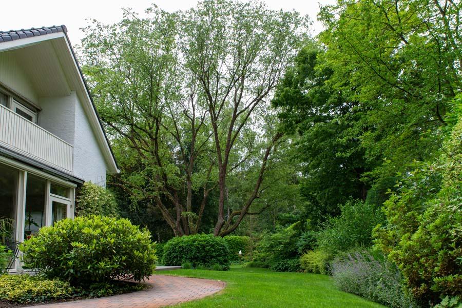groene tuin in schalkhaar (3)