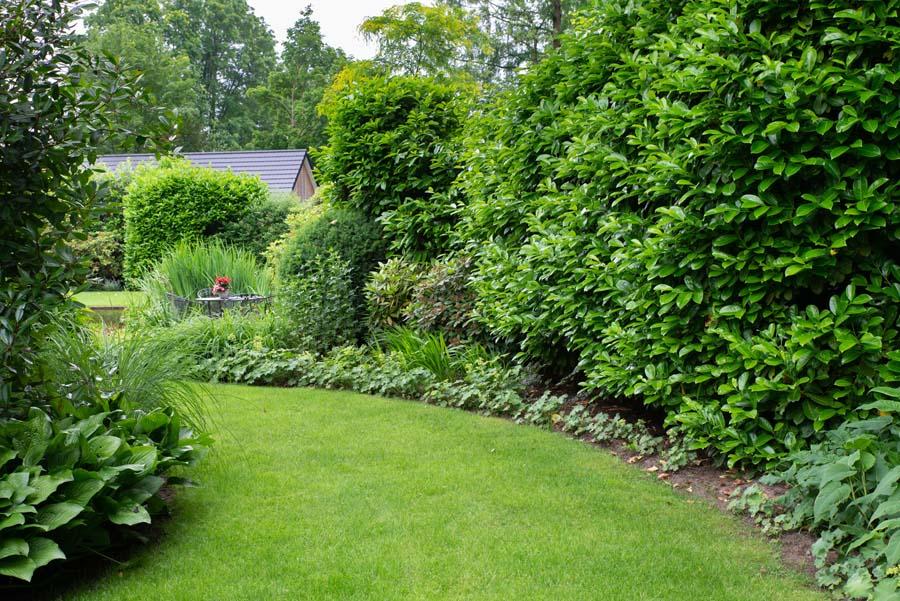 groene tuin in schalkhaar (5)