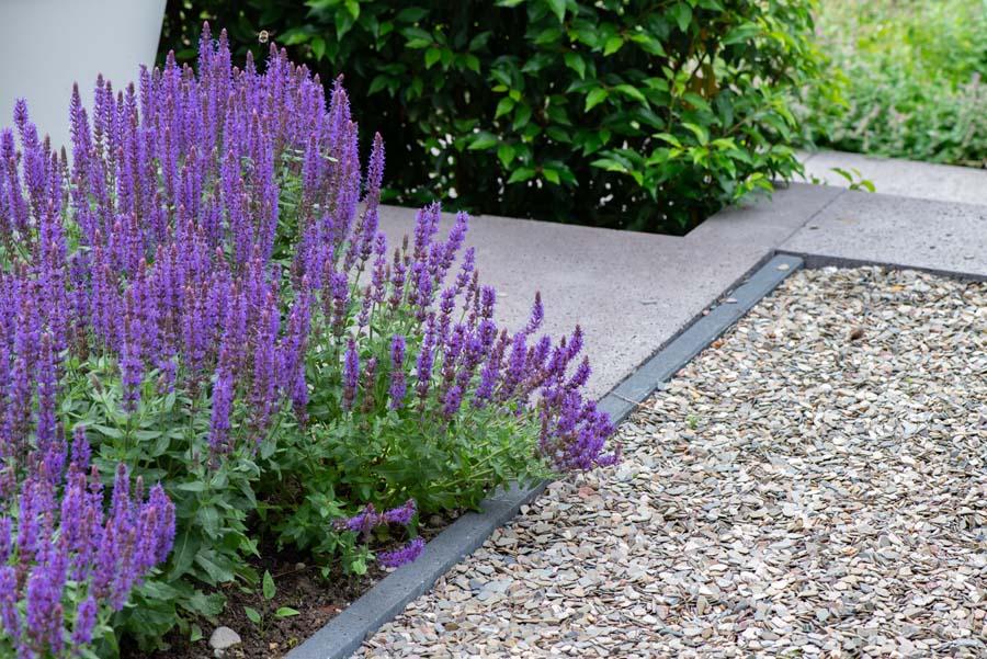 groene natuurlijke tuin met pergola (6)