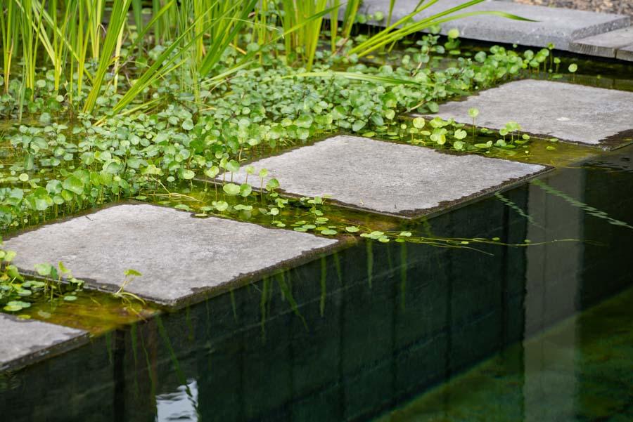 groene tuin met zwemvijver en overkapping (4)