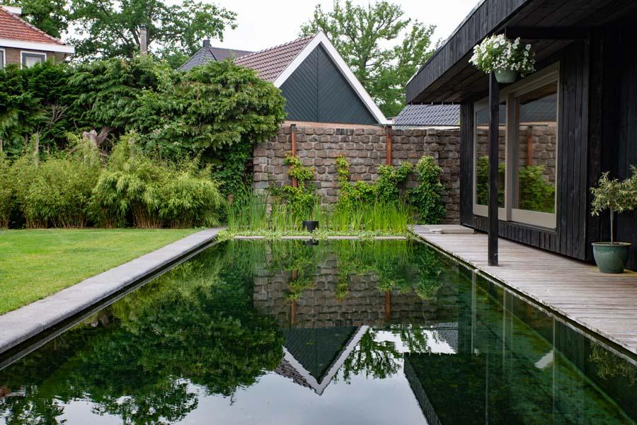 groene tuin met zwemvijver en overkapping (7)