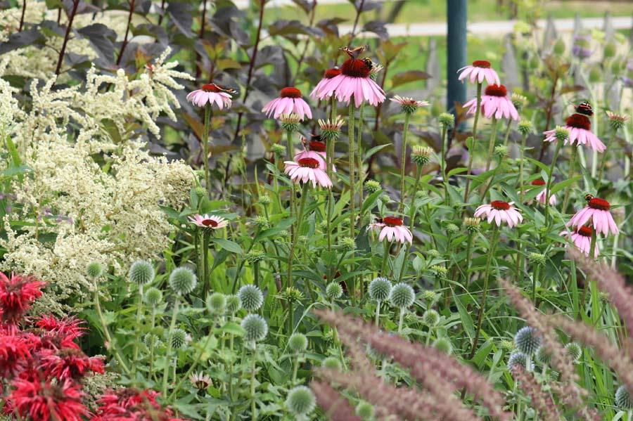 landelijke vrijliggende tuin (11)
