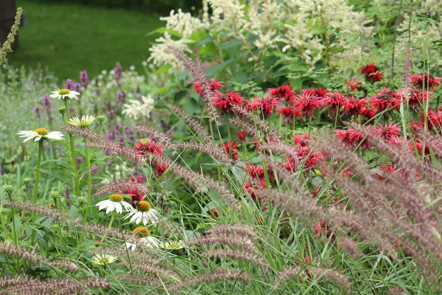 landelijke vrijliggende tuin (12)