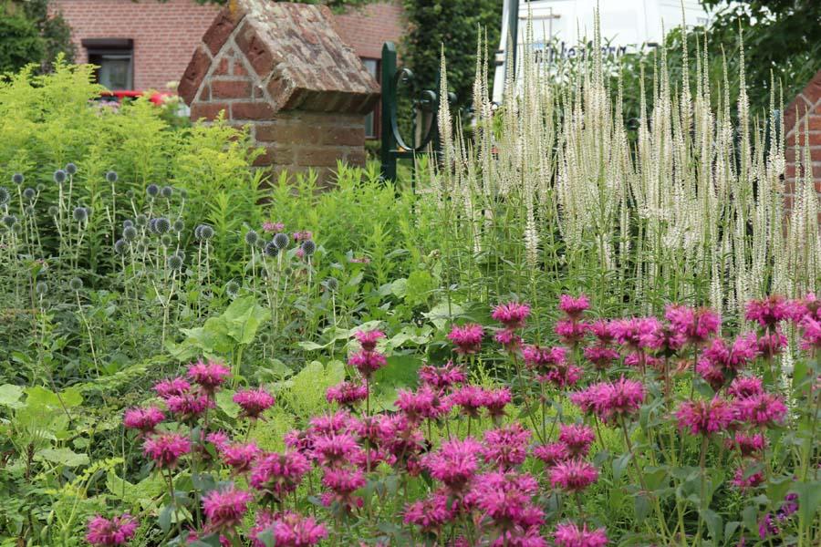 landelijke vrijliggende tuin (18)