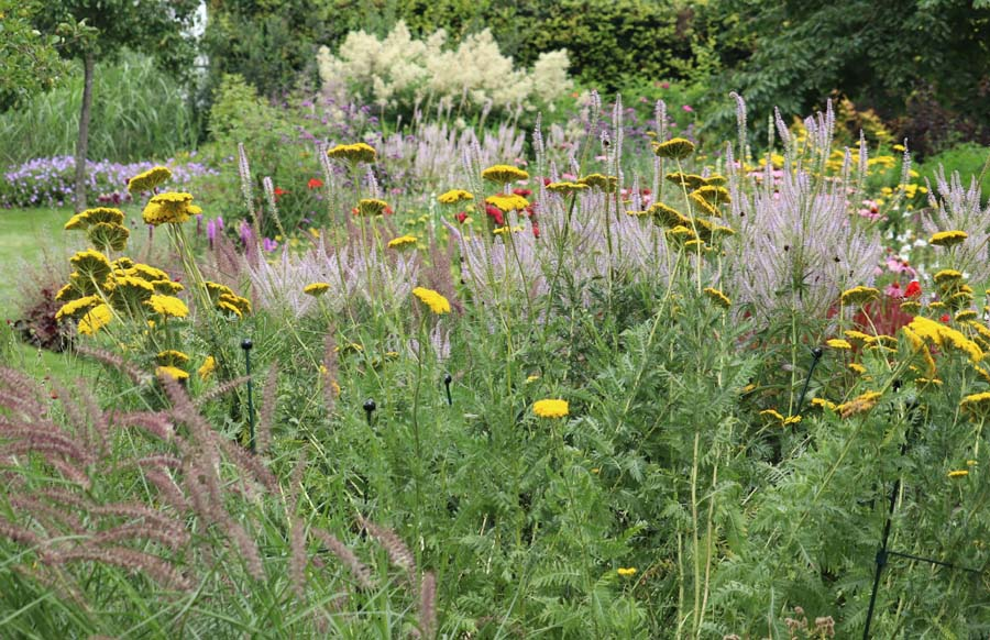 landelijke vrijliggende tuin (21)