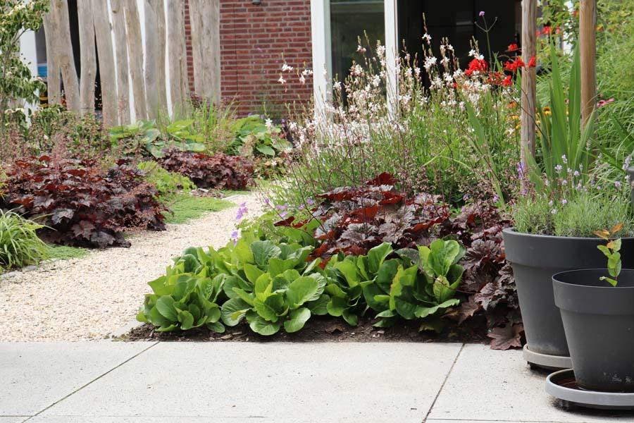 natuurlijke rustige tuin (12)