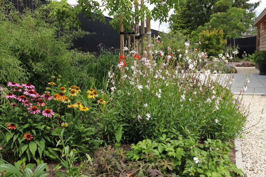 natuurlijke rustige tuin (16)