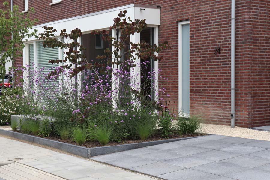 natuurlijke rustige tuin (2)