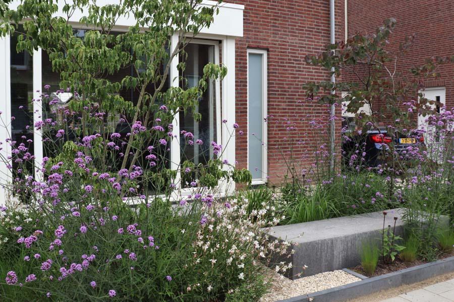 natuurlijke rustige tuin (3)