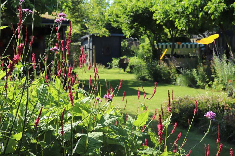 tuin met hoogteverschillen (10)