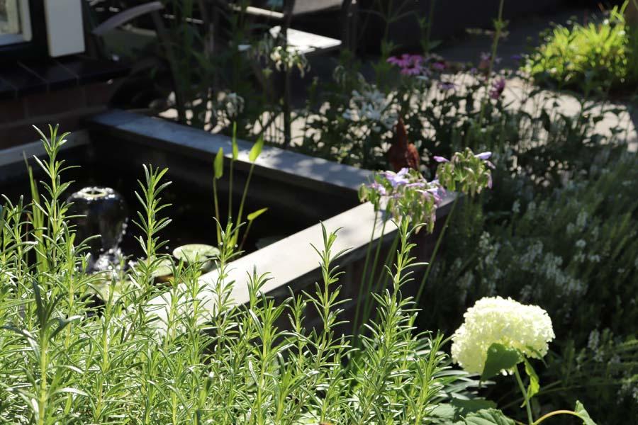 tuin met hoogteverschillen (12)