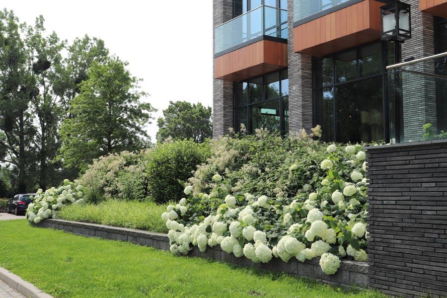 daktuin hotel dutch quality gardens 1