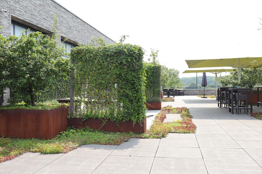 daktuin hotel dutch quality gardens 4