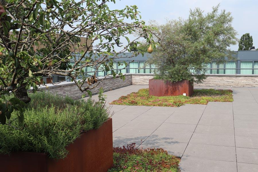 daktuin hotel dutch quality gardens 5