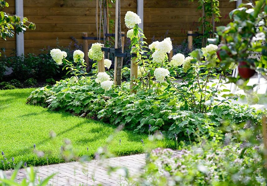 Dutch Quality Gardens Visio Vireo Trendy Tuin Met Overkapping In Putte 8